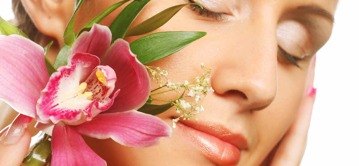 home   tranquility health amp beauty treatments zen sense
